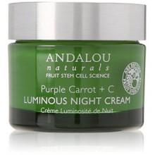 Andalou Naturals Purple Carrot Plus C Luminous Night Cream, 1.7 Ounce